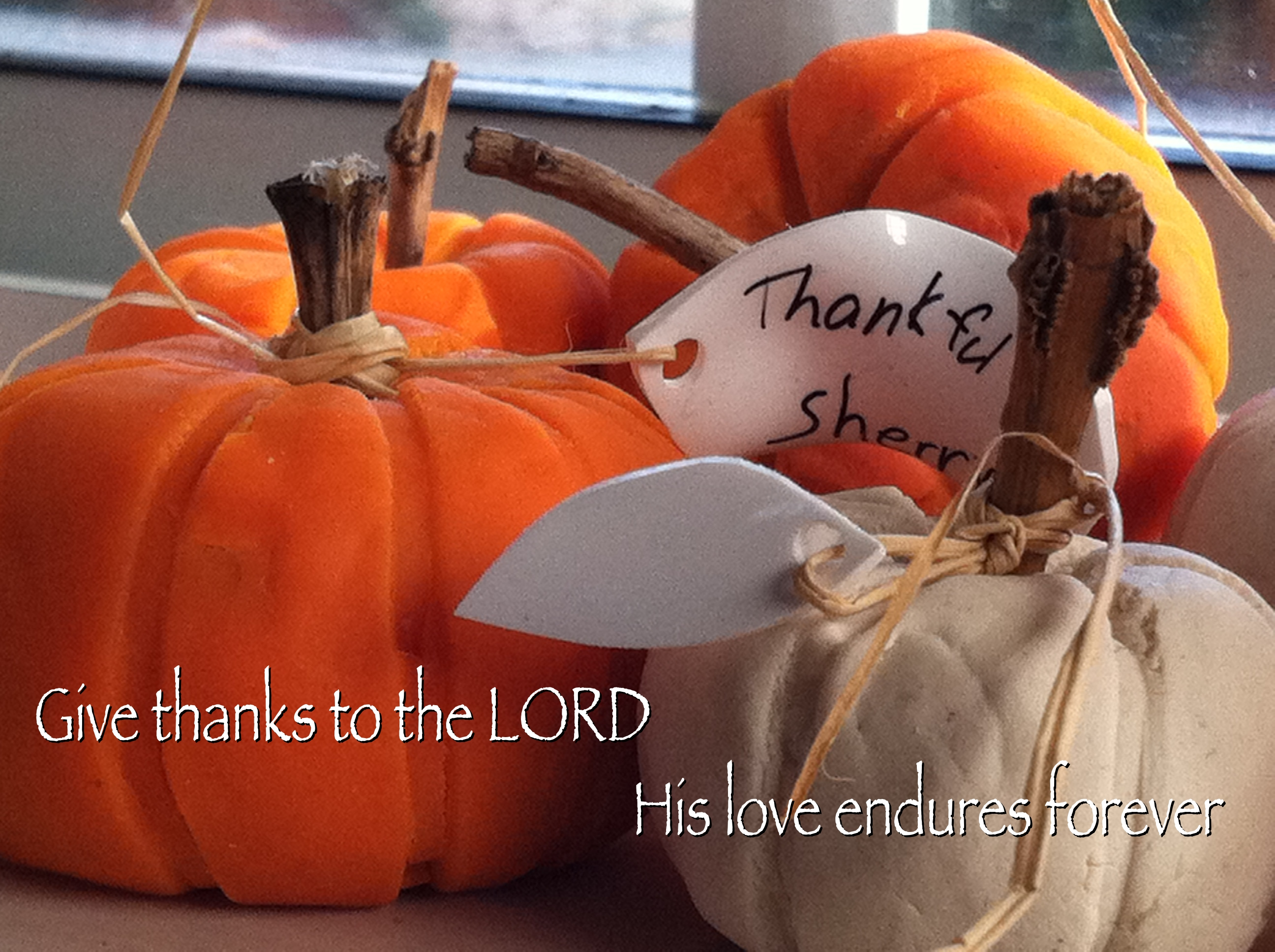 Giving Thanks 4 His Love Endures.